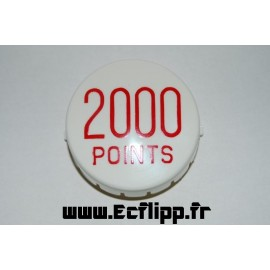 Gottlieb '2000 Points'